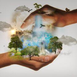 Hogyan éljünk és vásároljunk tudatosan – nem csak a Föld napján